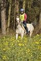 Seacliffe 2* Endurance Ride