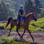 Ride Updates Spring 2016
