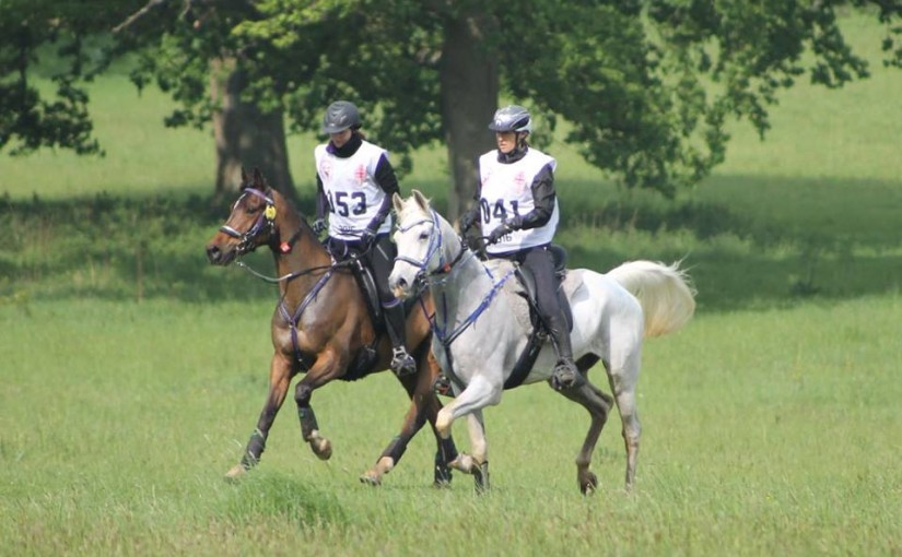 Royal Windsor Endurance