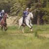 Thetford Forest Endurance