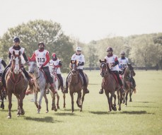 Windows Horse Show Endurance