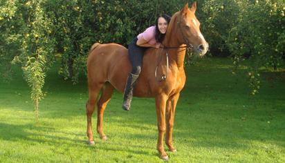 Akala Arabians