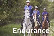 Endurance section